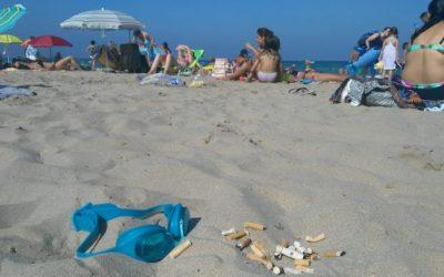 """Cuidado """"proyectiles venenosos"""" en la playa"""